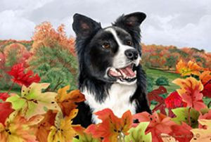 Border Collie Fall Mat