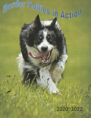 Border Collies in Action Catalog