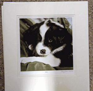Bill Print, Border Collie, Limited Edition by Mary Griese
