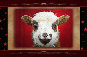 """Sheepish Smile"" Matted Print by Vickie Atkins Close"