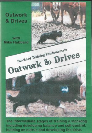 Stockdog Training Fundamentals Outwork & Drives