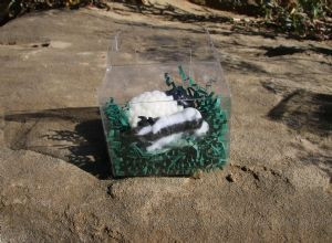 Border Collie & Sheep Soap Gift Pack - B&W