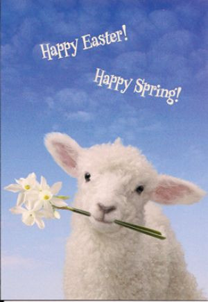 Happy Easter! Happy Spring! Note Card