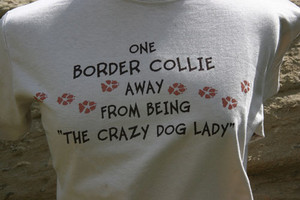 One Border Collie Away from Being the Crazy Dog Lady T-Shirt - Sand