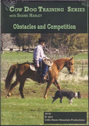 Obstacles and Competition with Shane Harley