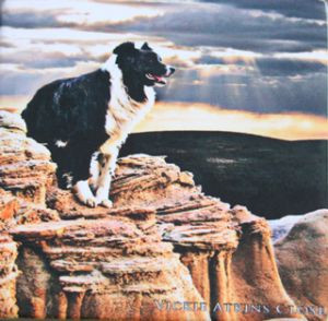 """Border Guard"" Print by Vickie Atkins Close"