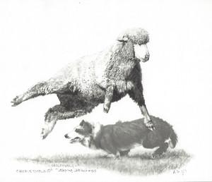 Leaping Lambchop - by Cheryl Volzt