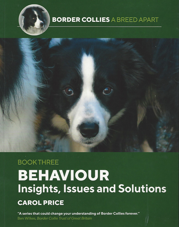 Behaviour: Insights, Issues & Solutions by Carol Price