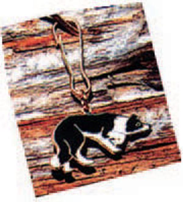 Border Collie Zipper Pull