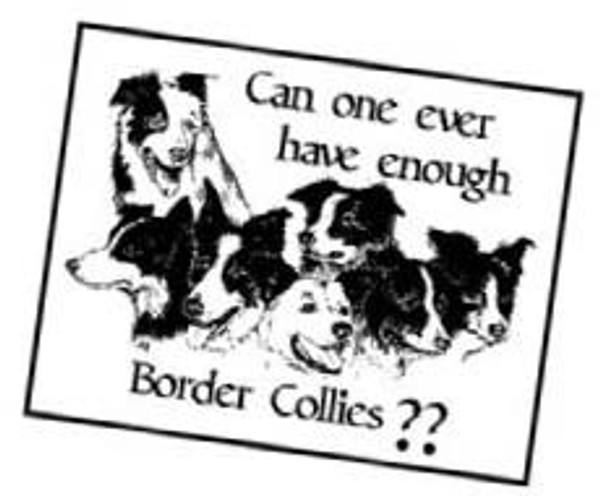 Enough Border Collies? Static Cling Sticker
