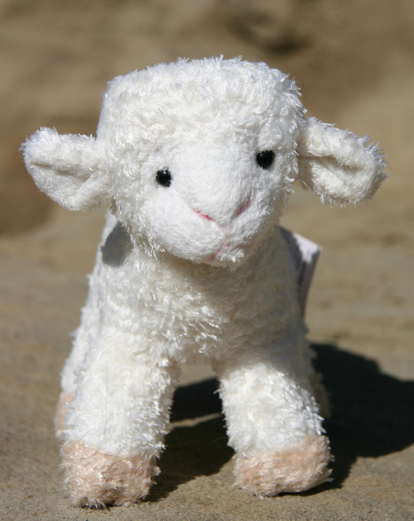 Babba Lamb Toy
