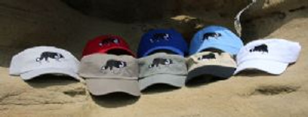 Low Profile Embroidered Cap