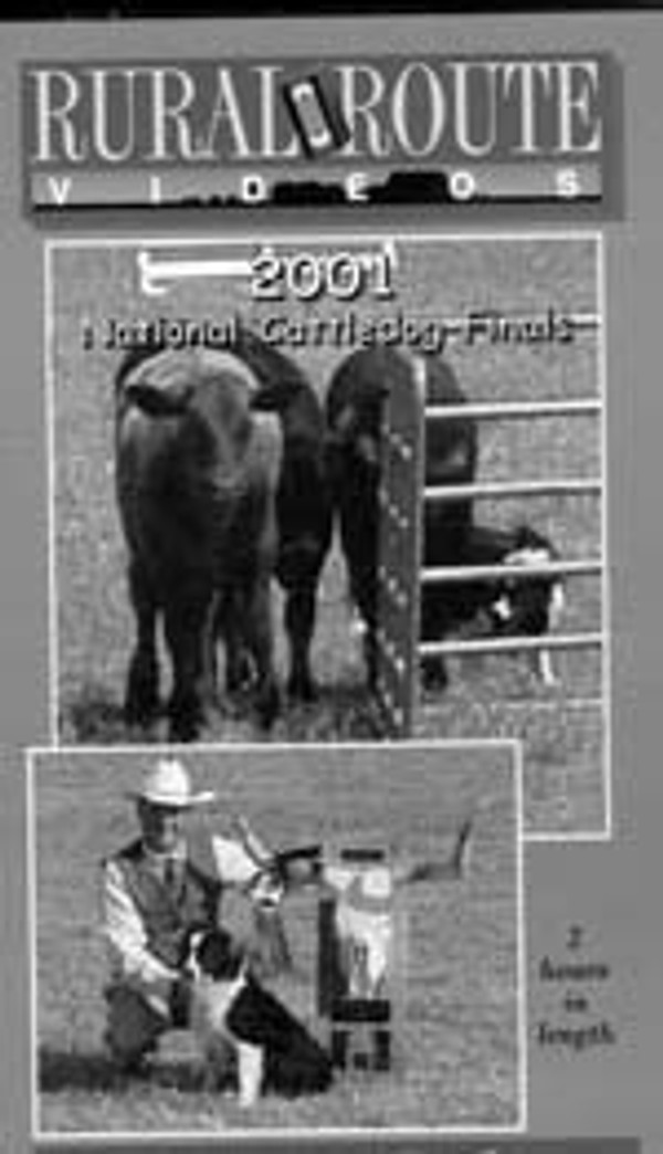 2001 National Cattledog Finals
