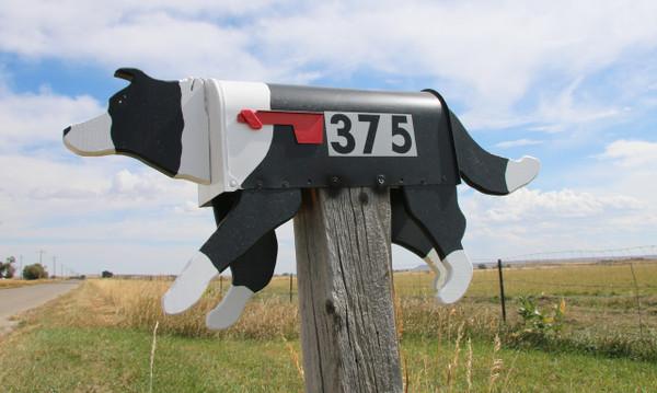 Border Collie Mailbox