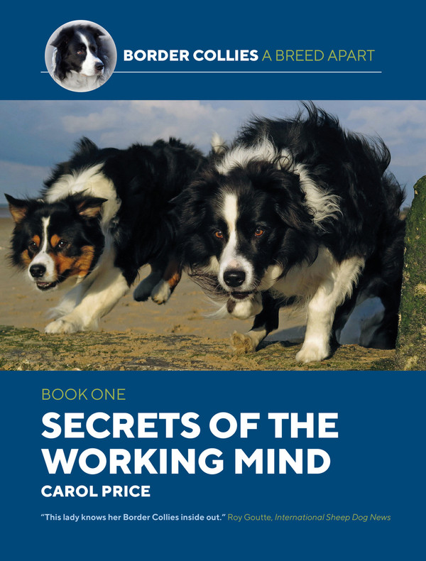 Secrets of the Working Mind - Book One - by Carol Price
