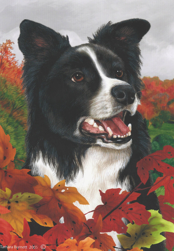 Fall Leaves Border Collie Flag