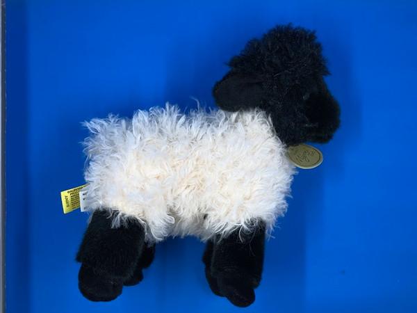 Suffolk Lamb