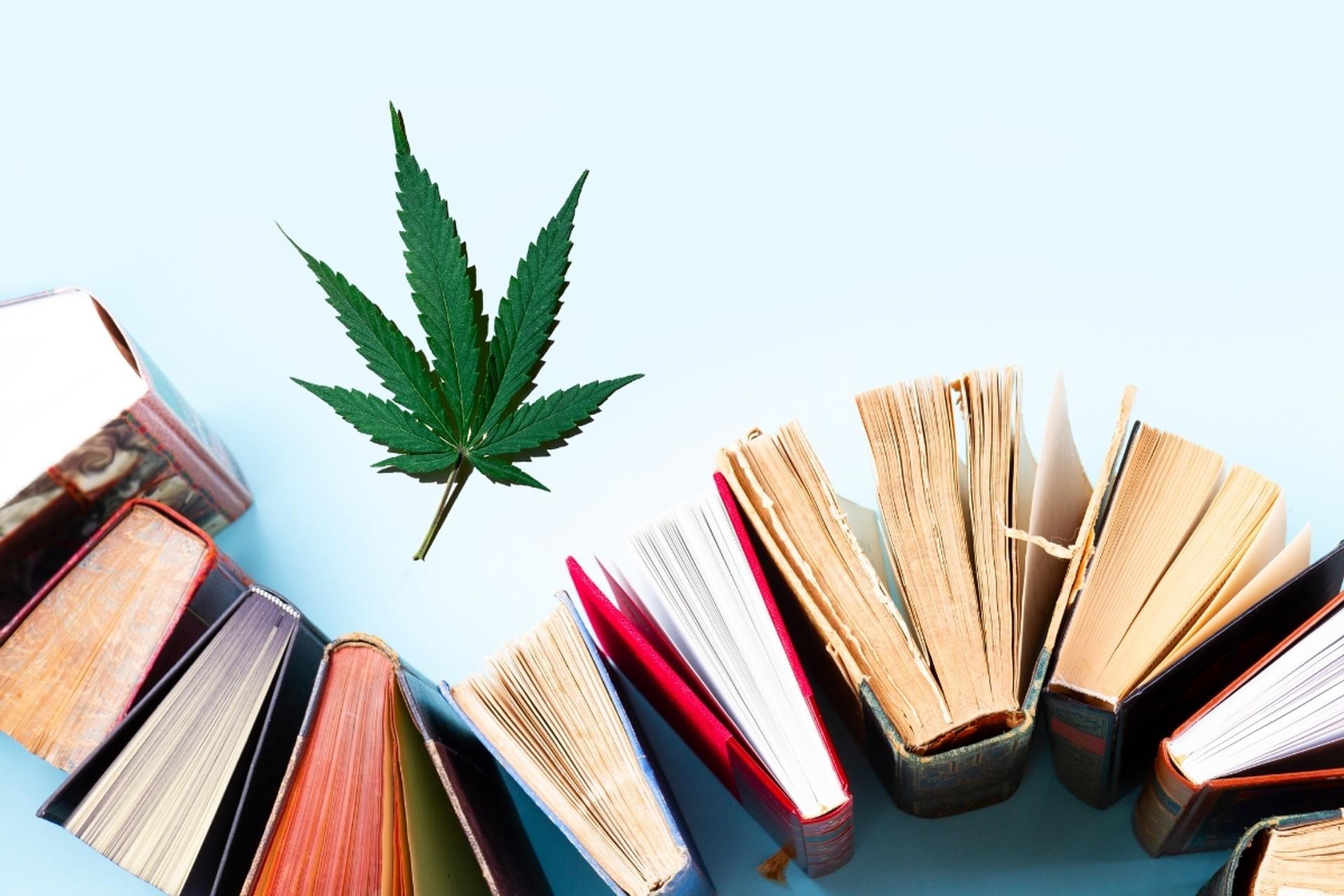 Our 6 Favorite Books on CBD
