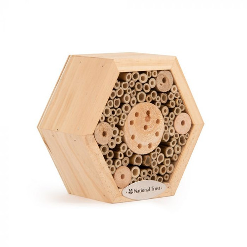 Personalised National Trust Hexagon Insect House