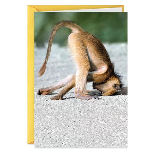 Baboon on Its Head Funny Birthday Card