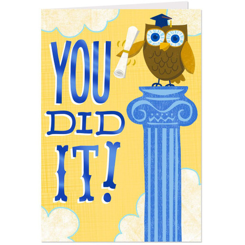 You Did It Owl Graduation Cards, Pack of 10
