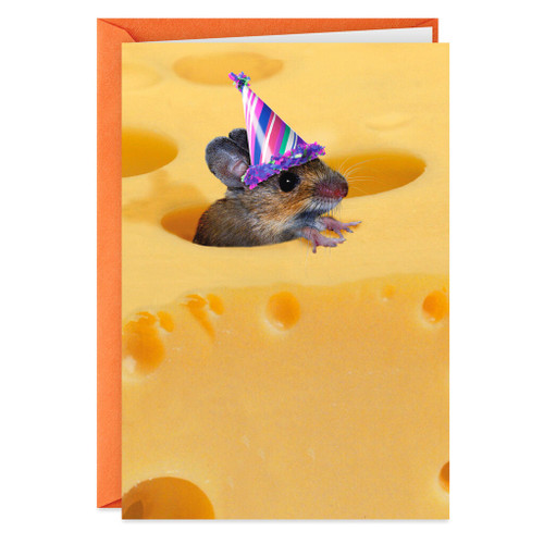 One of the Gouda Ones Funny Birthday Cards