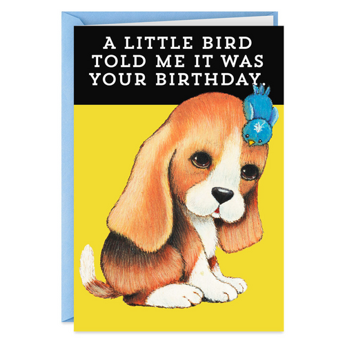 A Little Bird Told Me Funny Birthday Card