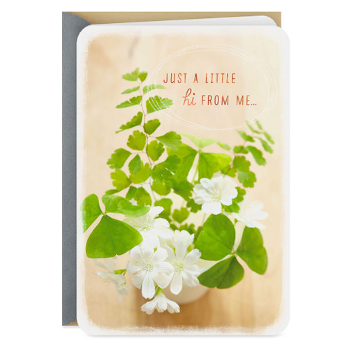 A Little Hi Thinking of You Card