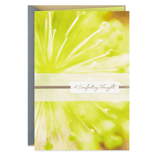 Green Flower a Comforting Thought Sympathy Card