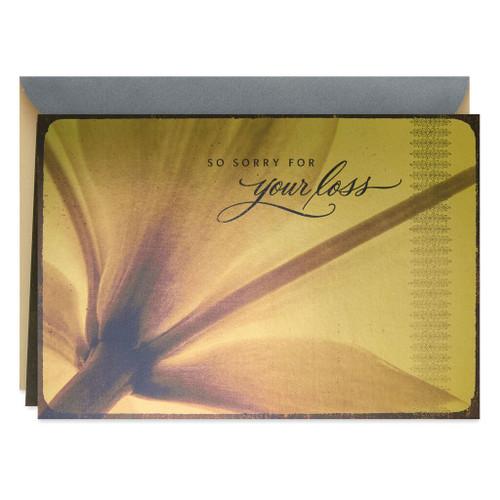 Sepia Photo Flower Petals Sympathy Card