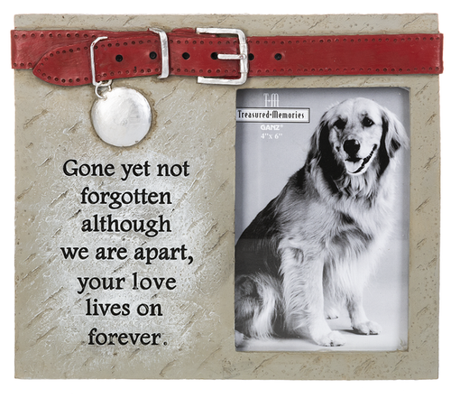 Pet Memorial Frame - Gone yet not forgotten
