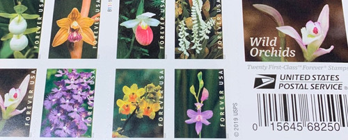 First Class Stamps - Wild Orchids
