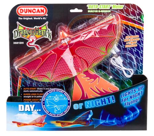Dragon Hawk Flying Bird