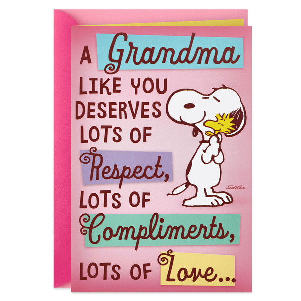 Peanuts® Snoopy and Woodstock Mother's Day Card for Grandma With Mini Cards