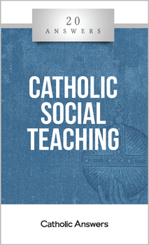 For centuries, the Catholic Church has contemplated how Christ's teachings should be applied to the interactions among human beings. 20 Answers: Catholic Social Teaching offers an incredibly clear and useful introduction to this often misunderstood topic.