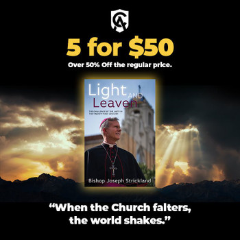 Light and Leaven: The Challenge of the Laity in the Twenty-First Century - 5 For $50