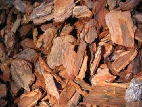 Pine bark mulch is from shredded pine trees. Most of the pine bark mulch comes from tree logs. Pine bark mulch comes in shades of golden brown, red, and brown.  The color depends on where the pine trees are located. Pine bark mulch is a very light weight mulch. Pine bark mulch can help maintain moisture around plants, but needs to be a few inches deep.