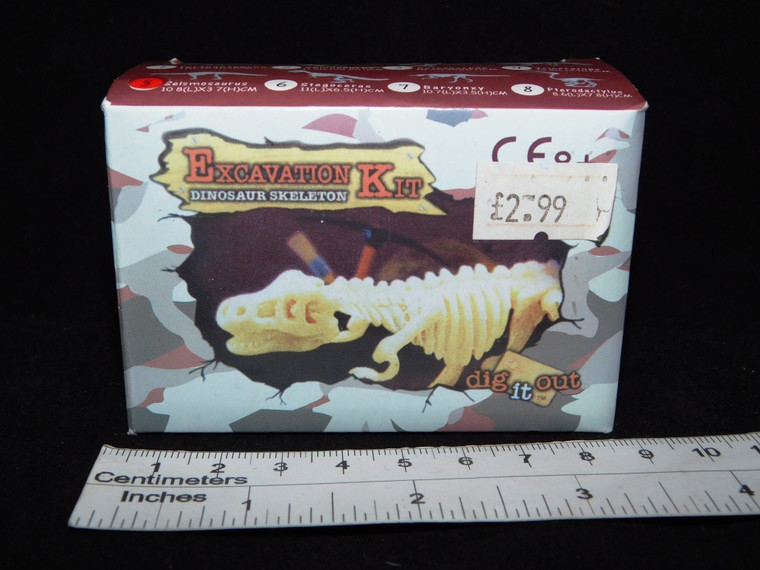 Excavation Kit Dinosaur Skeleton