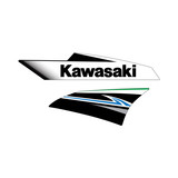 2011 Kawasaki KLX450R Replica OEM Shroud Graphics