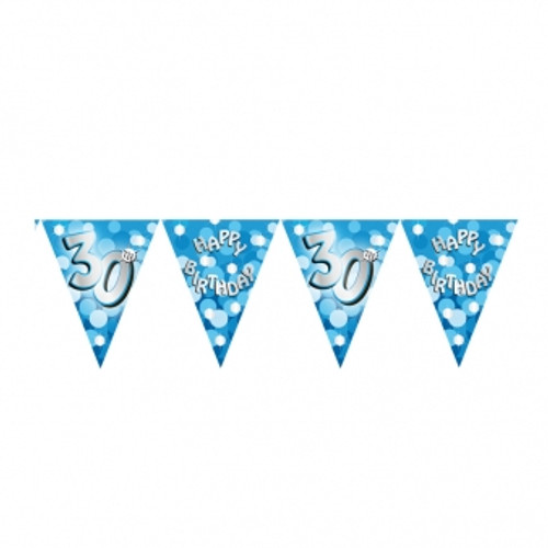 Blue Sparkle Bunting Age 30