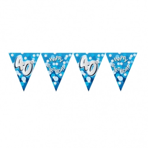 Blue Sparkle Bunting Age 40