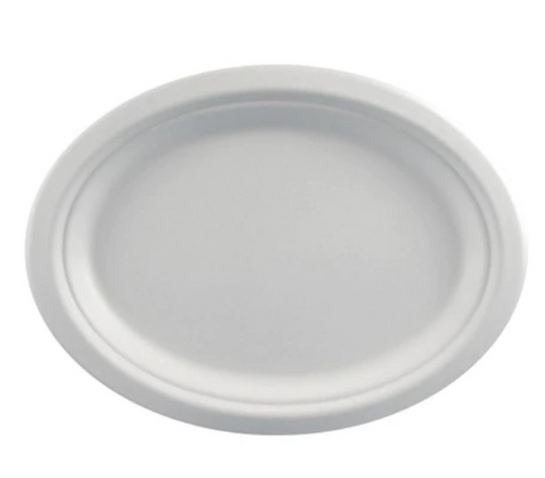 Bagasse Round Plates Pk10 7in