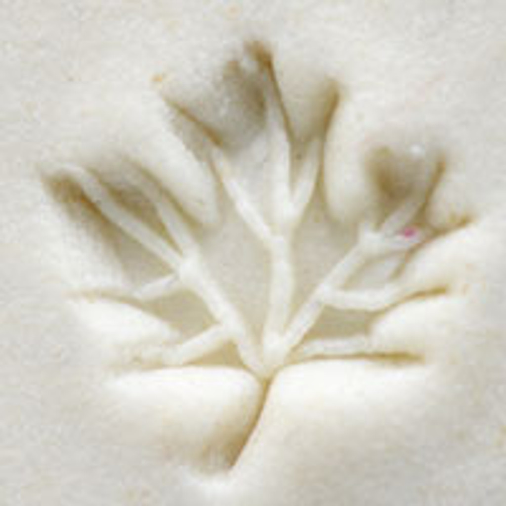 Maple Leaf with Veins Stamp