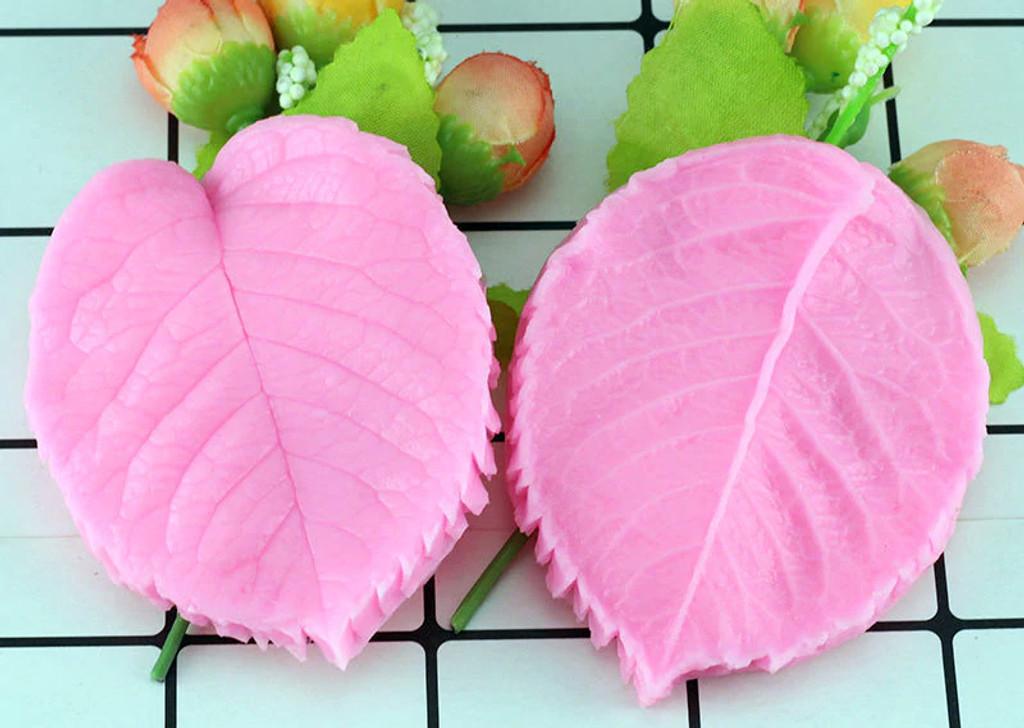 Leaf Petal Vein Textures front and back