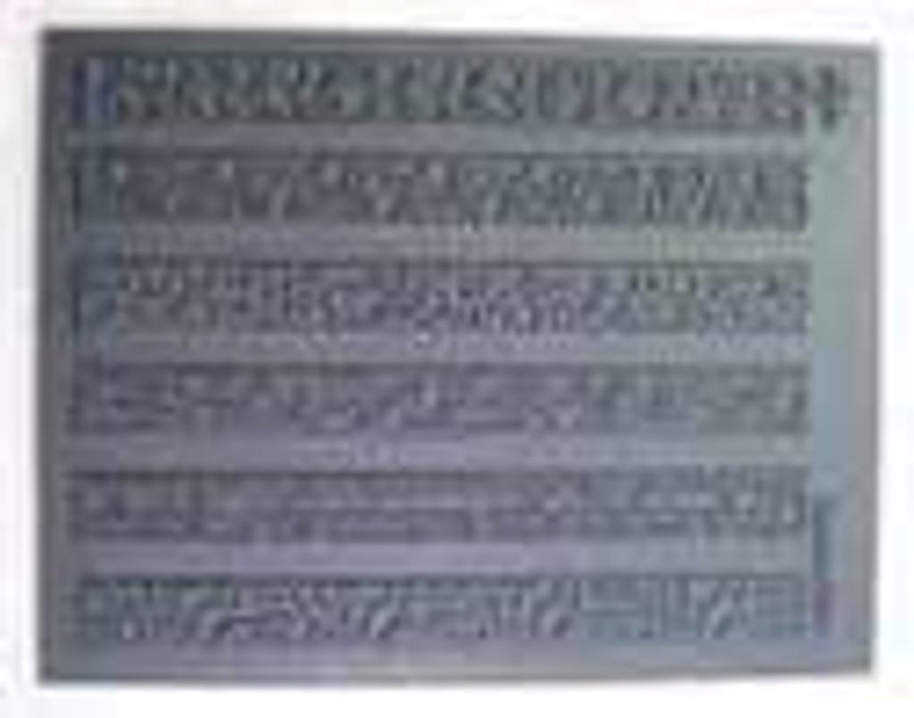 Slightly Blemished Shanks ALot Texture Stamp
