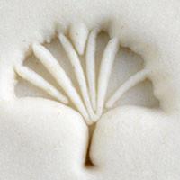 Gingko Leaf Stamp