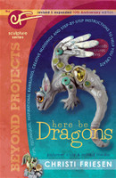 Christi Friesen Here Be Dragons Book UPDATED