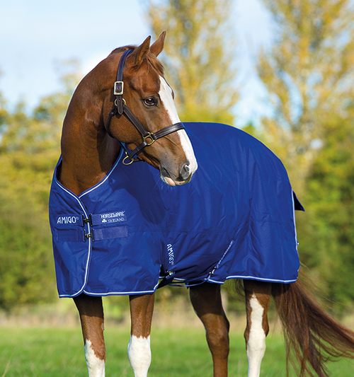 Horseware Amigo Hero 6 Medium Turnout (200g) Blanket