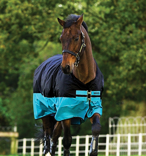 MIO Pony Turnout Blanket - Black/Turquoise
