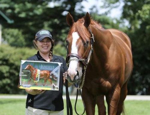 Justify with his Breyer Model